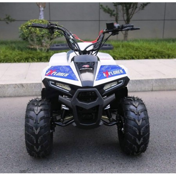 Quad EXPLORER 110